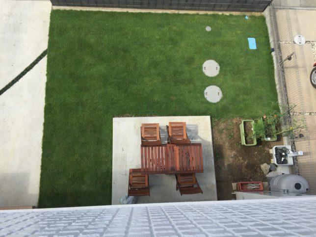 8月の姫高麗芝は毎日水やり、週2回芝刈り