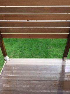 姫高麗芝の芝生。冬に茶色くなるのが嫌で、ウインターオーバーシーディングを実施した結果