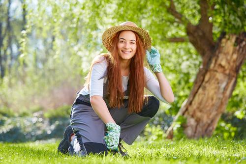 絶対欲しい 僕の夢の芝刈り機とサッチマシーン